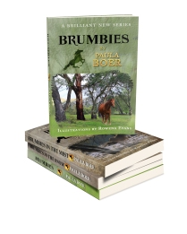 Stack O Brumbies